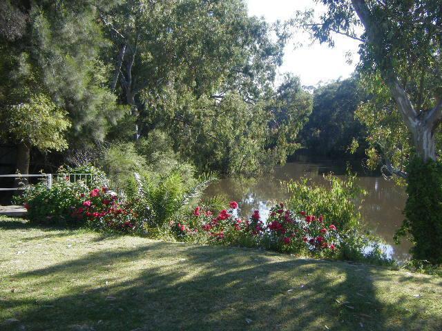 River views from back verandah - Bidgee Bankside Cottage - Hay - rentals