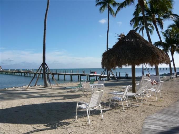 Sandy Beach - BEACON REEF 222 - Islamorada - rentals