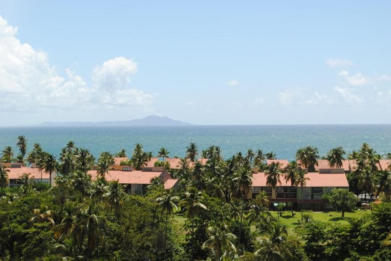 View from Kitchen - Luxury Ocean-view Penthouse in Palmas Del Mar PR - Humacao - rentals
