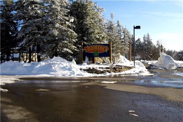 Shamrock #35 - Image 1 - Snowshoe - rentals