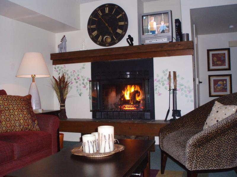 Fireplace - Lakefront Condominium on Big Boulder  Lake Harmony - Lake Harmony - rentals
