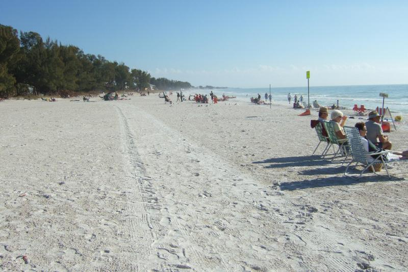 Beach - Gulf Beach Place, miles of whites sandy beach - Holmes Beach - rentals