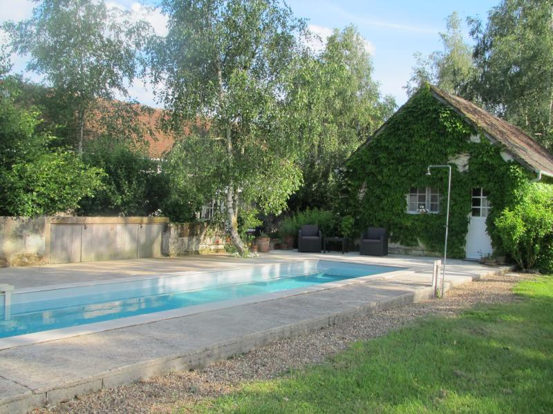Pool shot (with our house beyond, at far left) - Charming & Private Stone Cottage W/ Saltwater Pool - Pontlevoy - rentals