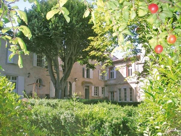 Domaine Villardonnel Languedoc villa rental, rent a villa languedoc - Image 1 - Villardonnel - rentals