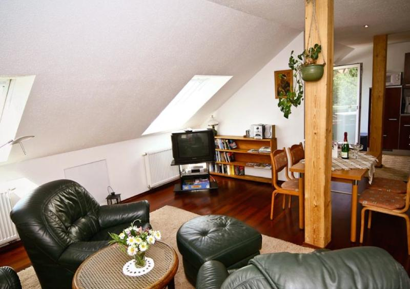 Living Room (2) - LLAG Luxury Vacation Apartment in Meissen - 700 sqft, well-kept, in an optimal location, central next… - Meissen - rentals