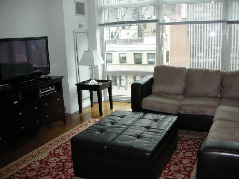 Fabulous NYC Views - Prime Location - Image 1 - New York City - rentals