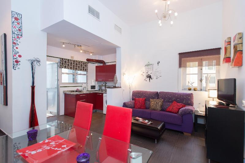 Ampllio loft living room modern style - PALACE XIX CENTURY .LOVELY APARTMENT NEAR CATHEDRAL  AND SANTACRUZ CENTER,FREE WIFI - Seville - rentals