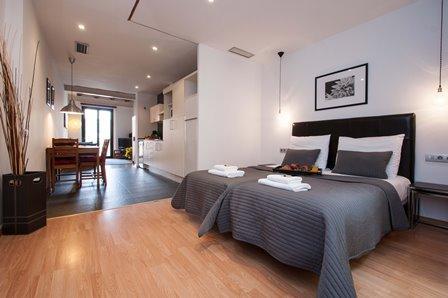 Liceu Loft Studio F1 - Image 1 - Barcelona - rentals