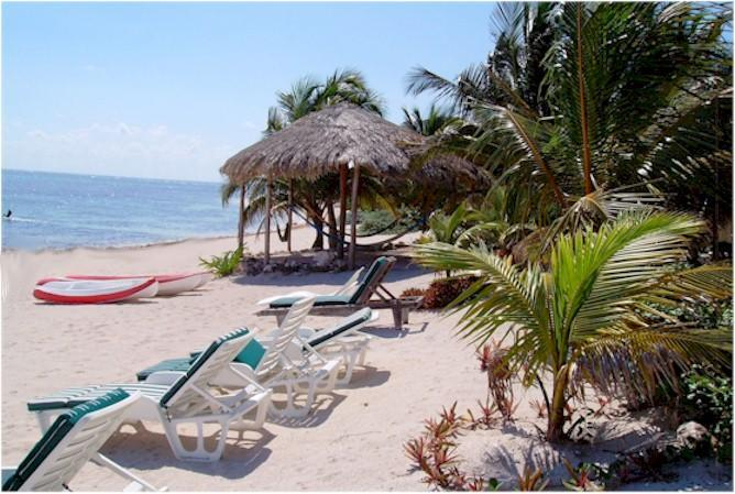 Hammock palapa and beach chairs - A real B & B on the beach in Mexico's Rivera Maya. - Tulum - rentals