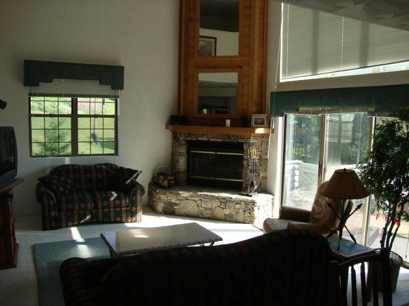 Livingroom - COZY SEVEN SPRINGS TOWNHOUSE AT WOODRIDGE - Champion - rentals
