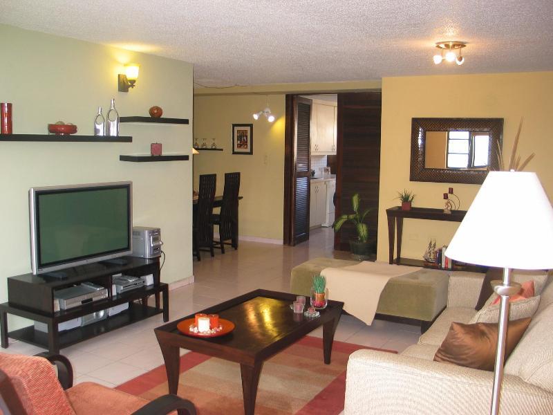 Living - Renovated Condo in the heart of Condado LagoonView - San Juan - rentals