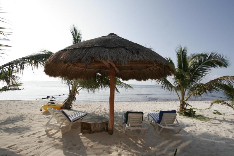 Ocean View - Casa Caracol Large Beachfront Villa, WiFi - Tulum - rentals