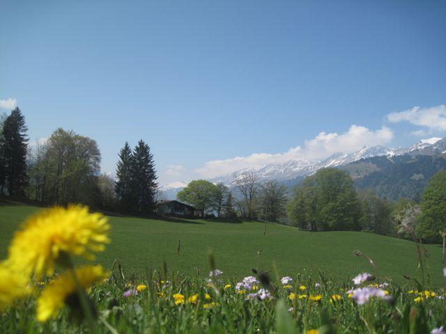 chalet from afar - Luxury 6 bedroom chalet with superb views - Bernese Oberland - rentals
