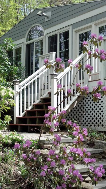 Spring exterior - Perfect Getaway for Body, Mind and Soul - Lee - rentals