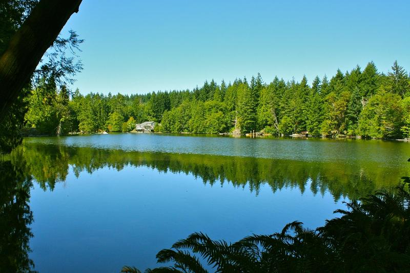 Gorgeous views on 7.7 acres of forest and waterfront - very private and peaceful - Cedars on the Sound: Olympia's Top Rated Home - Olympia - rentals