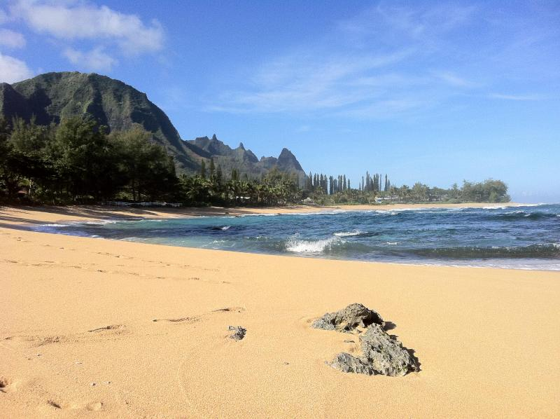 Beautiful secluded beach across the road - The Mermaid House - Steps Away from Pristine Beach - Haena - rentals