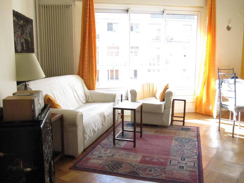 large and sunny living room - Beautiful Vacation Residence in Paris 7th District - Paris - rentals