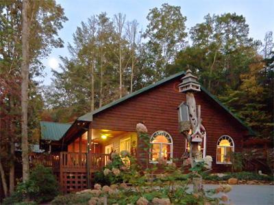 Surrounded by nature - Hemlock Falls - Whimsical and Fun! - Franklin - rentals