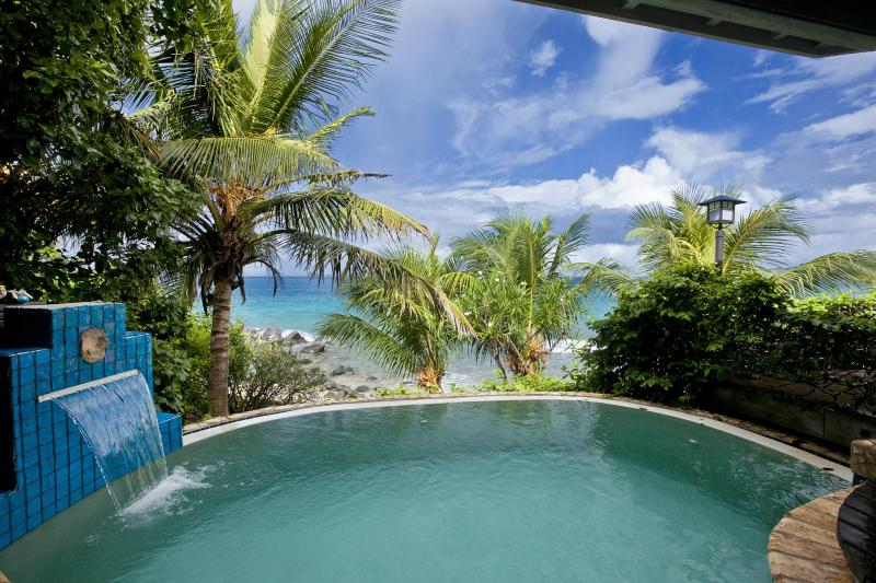 Romantic, alluring, enticing (insert adjective) infinity edge plunge pool with beach view;Sundowner. - Romantic Beachfront Honeymoon Villa/Very Private ! - Virgin Gorda - rentals