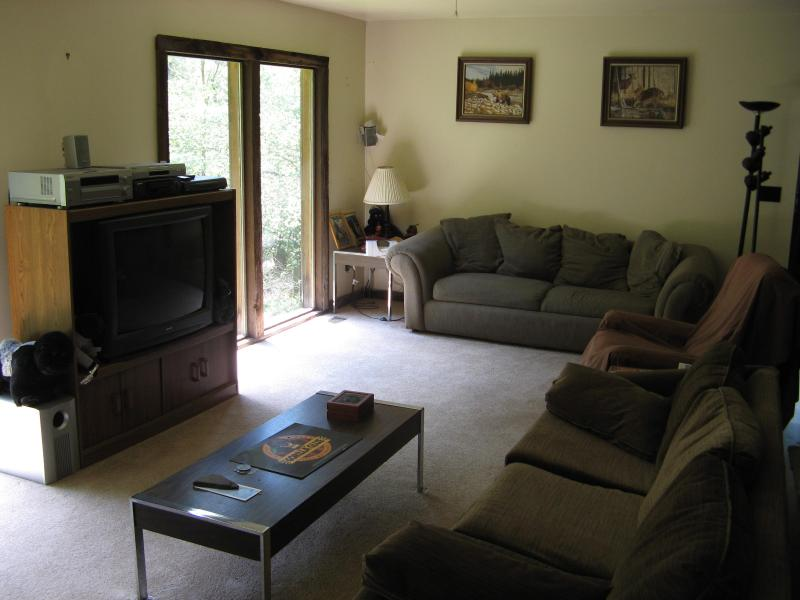 LIVING ROOM - Oneonta Baseball Rental 10 Min To All Star Village - Oneonta - rentals