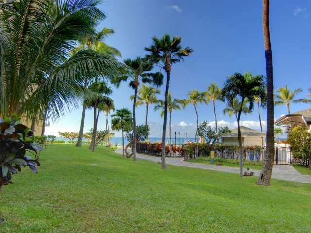 Kaanapali Shores 155 - Image 1 - Ka'anapali - rentals