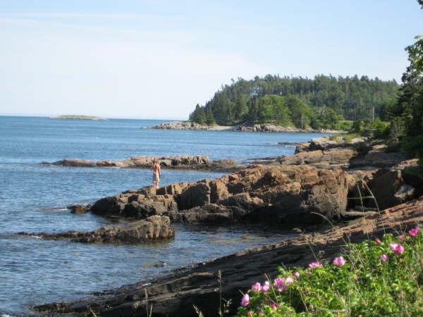 Search the tidepools in front of your dedicated Bar Harbor Shorepath seating at