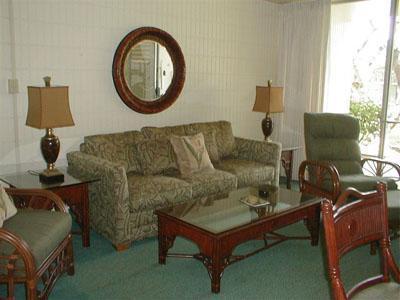 Napili Shores Newly 1 Bedroom Paradise - Image 1 - Napili-Honokowai - rentals