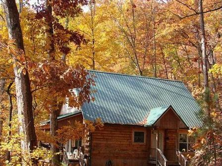 Hummingbird Hollow in Bryson City  - Hummingbird Hollow - This Mountainside Log Cabin with a View Is Less than 15 Minutes from the Great Smoky Mountains Railroad - Bryson City - rentals