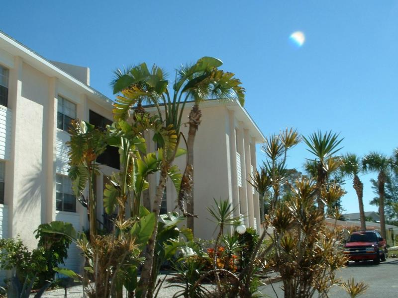 Holiday Condominiums - 2BR Steps to Gulf-Manasota Key, Modern Clean Condo - Englewood - rentals