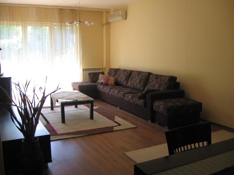 new sofa - Luxury  Gurko street apartment - Sofia - rentals