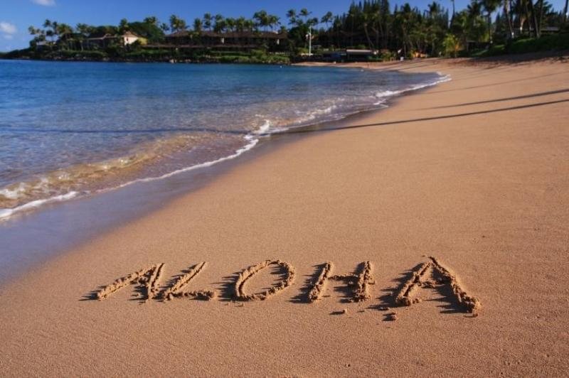 """Welcome Guests -- E Komo Mai - Close to the Beach, Very Far from """"The Usual"""" - Kihei - rentals"""