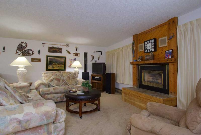 1 Bedroom, 2 Bathroom House in Breckenridge  (03C1) - Image 1 - Breckenridge - rentals