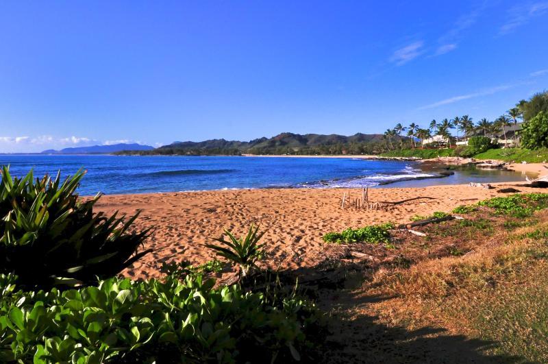 Our beach - Handicap easy..Oceanfront , ground floor. Pool - Kapaa - rentals