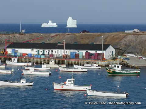 On the Ocean- Whale watch from your back deck - Image 1 - Newfoundland and Labrador - rentals