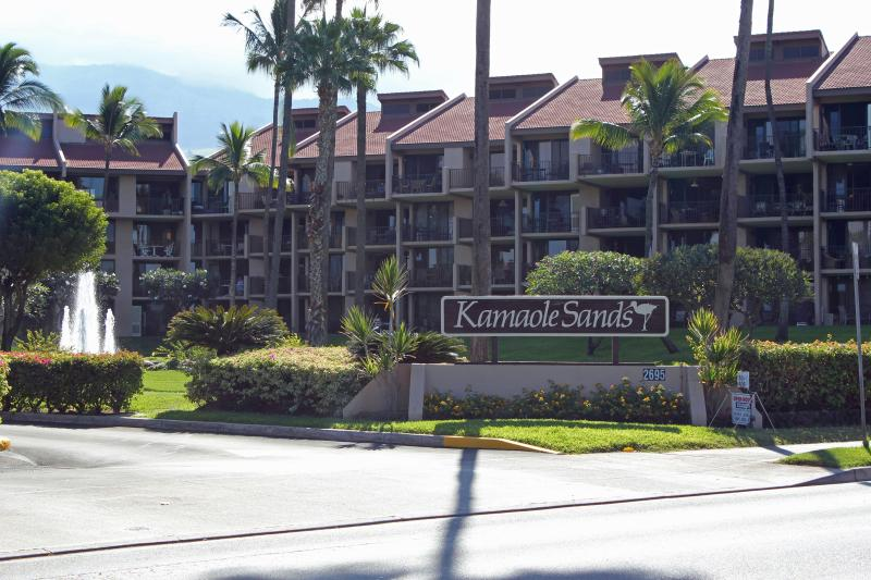Kam Sands Magnificent Ocean View 2BR/2BA free WIFI - Image 1 - Kihei - rentals