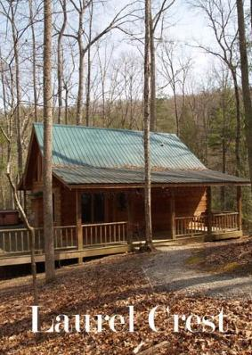 Laurel Crest-secluded 2 bedroom cabin with hottub - Image 1 - Townsend - rentals
