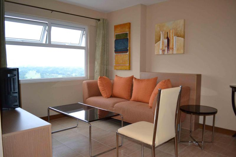 Our living room with a view - Spacious Manila 2 BR Loft Type Condo near Malls - Mandaluyong - rentals