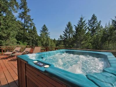 Hummingbird House, Spa, Privacy, Views, Wine Country, CA - Hummingbird House - Forestville - rentals