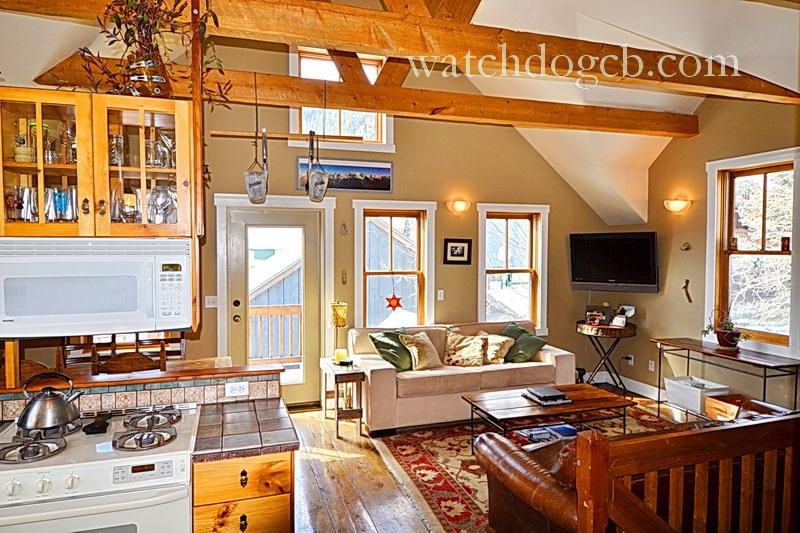 Town! Pets! Yard! Slps 6! - Image 1 - Crested Butte - rentals
