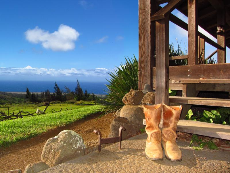 Take your Boots off, stay a while - Kohala Lodge - Kohalalodge.com - Hawi - rentals