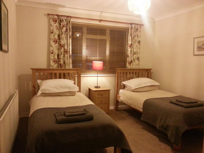 Twin room overlooking the residential car park - Farnham Flat: ideal for business & single visitors - Farnham - rentals
