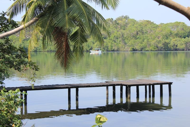 Pier to relax on or have your tea - South Point Cottage- lakefront - 1 km to beach - Galle - rentals