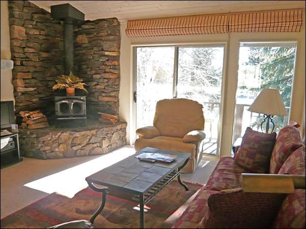 Sunny Living Room - Perfect for One or Two Small Families - Recently Updated Accommodations (1056) - Ketchum - rentals