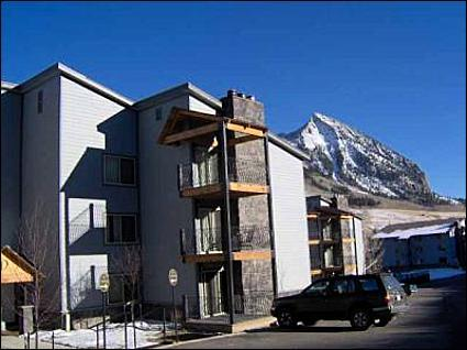 Great Central Location - Views of Mt. Crested Butte - Close to the Historic Town of Crested Butte (1011) - Crested Butte - rentals