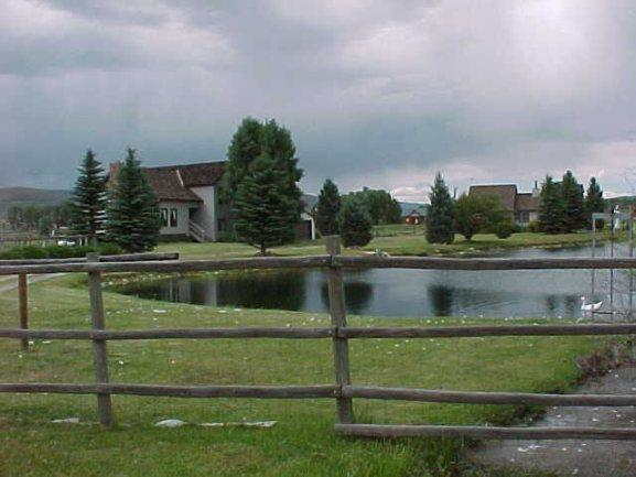 View from driveway - Charming guest house with pond, Gunnison Colorado - Gunnison - rentals