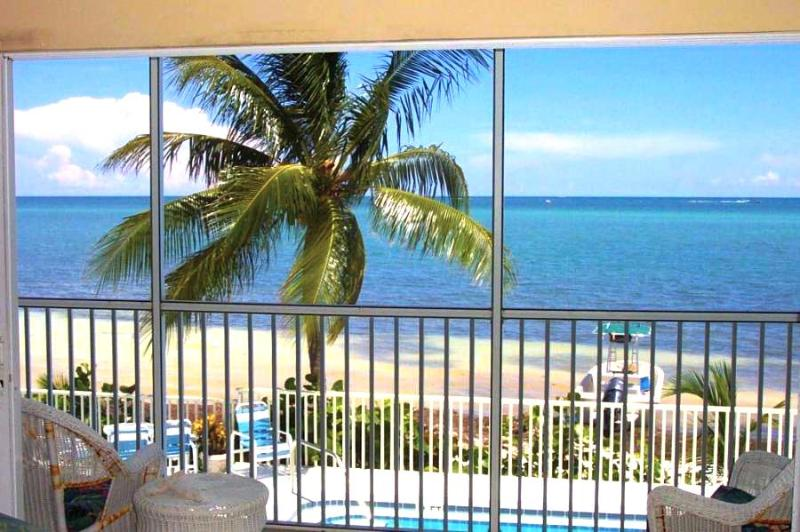 The View:  The Pool, The Palm, The Beach and The Ocean!  WOW! - Amazing Ocean View Condo on the Beach! - Marathon - rentals