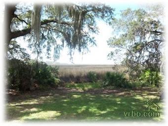 Marsh view - Beautiful Marsh Views Under Centuries Old Oaks - Saint Simons Island - rentals