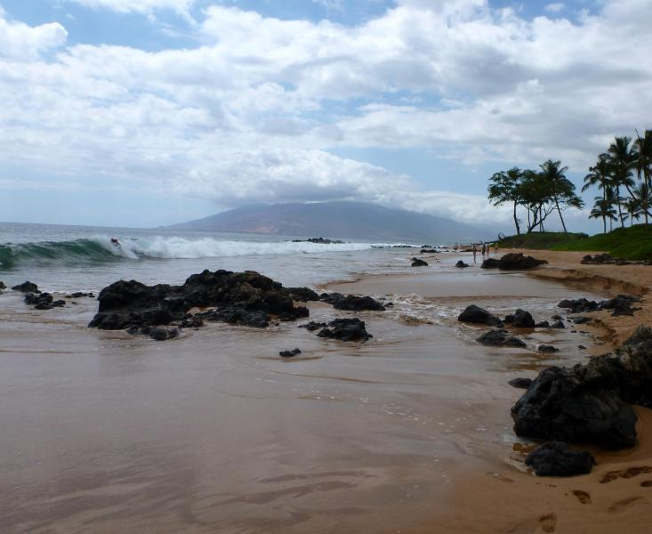 Keawakapu Beach: walk for miles! - Keawakapu Ocean View, newly renovated green 2BR 2B - Kihei - rentals