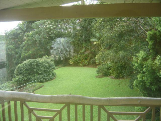 View of Backyard - Nice 1- BR Apt. Hamakua Coast, 5 min. to Dtwn Hilo - Papaikou - rentals