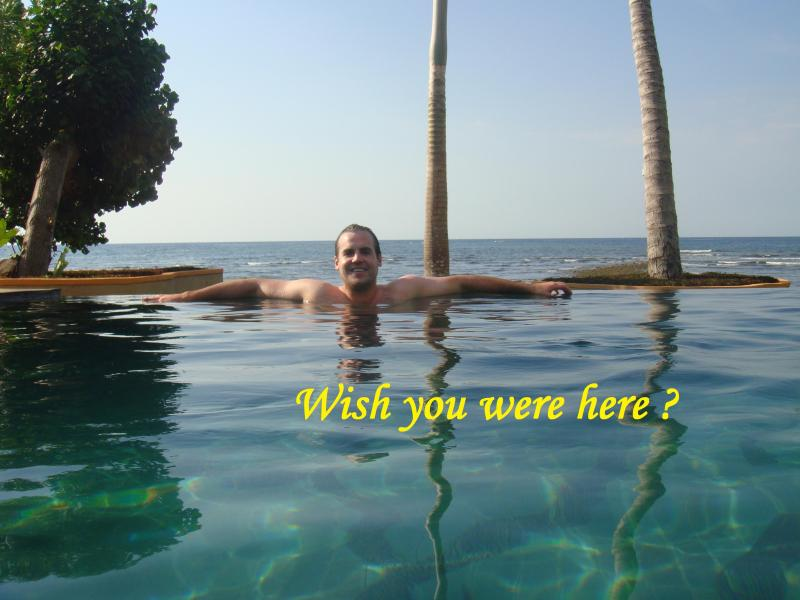 Wish You Were Here ? - Dolphin Beach Bali - Lovina - rentals